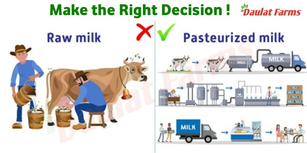 Daulat Farms Raw vs pasteurized milk